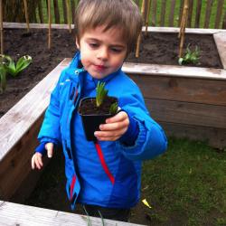 Werken in de tuin van Kinderdagverblijf Prikkebeen